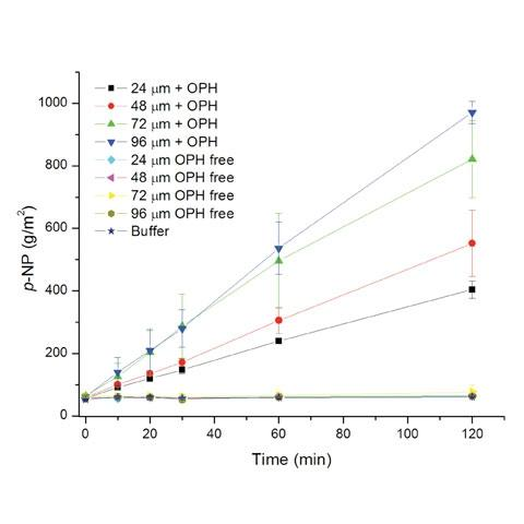 Fig 4.  OPDtox hydrolysis of paraoxon shows hydrolysis rate is affected by bulk volume (film thickness).  Control films had no activity, while progressive increases in film thickness of material containing the OPH enzyme demonstrated a clear dose response.