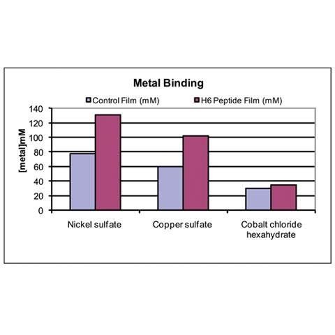 Fig 5. His6 peptide was blended into the vinyl latex coating and then assessed for ability to chelate metals.  Although the control films bound free metal in solution, the peptide functionalized coatings chelated significantly more free metal from solution.