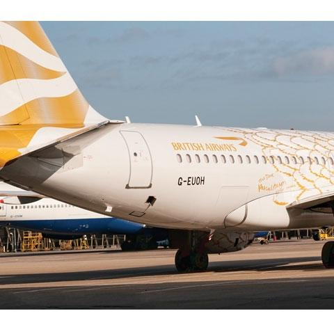 PPG Aerospace coatings specialists worked with livery artist Pascal Anson to supply Desothane HS/CA 8000 series topcoats in gold, light grey and white.